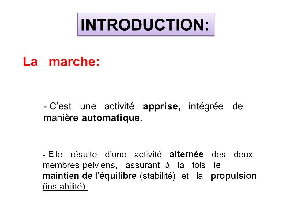 Mouvements de Flexion / Extension B- CINÉMATIQUE ARTICULAIRE : LES PARAMETRES CINEMATIQUES DE LA MARCHE BIOMECANIQUE DE LA MARCHE 2- Articulation du genou: 1 2 3 4
