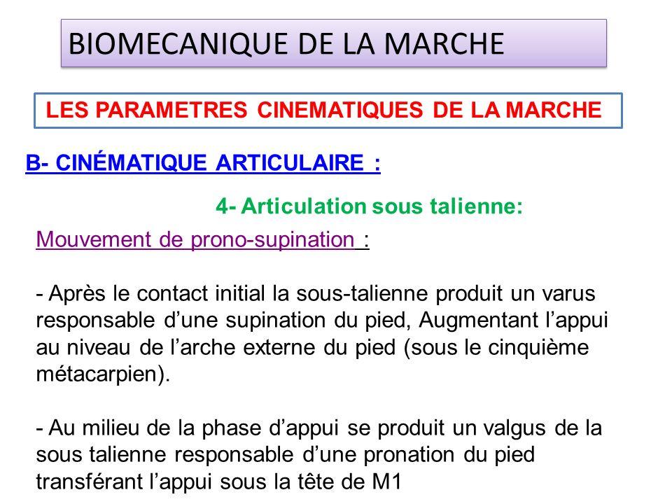 B- CINÉMATIQUE ARTICULAIRE : LES PARAMETRES CINEMATIQUES DE LA MARCHE BIOMECANIQUE DE LA MARCHE 4- Articulation sous talienne: Mouvement de prono-supi