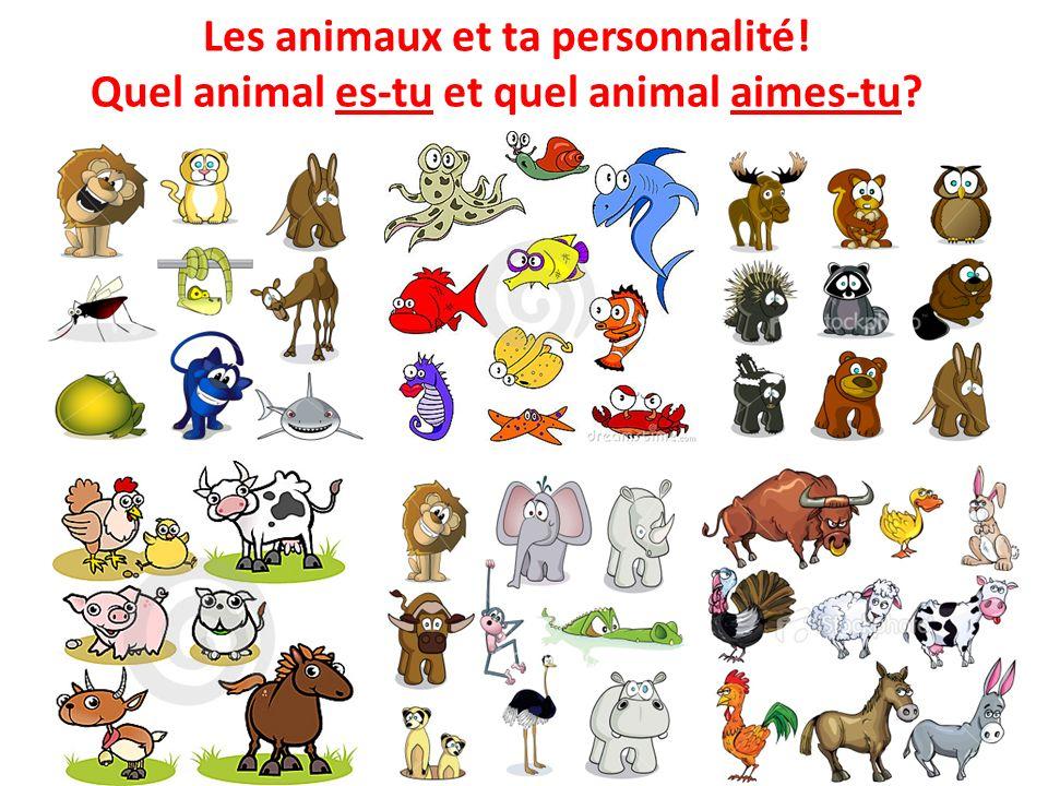 Les animaux et ta personnalité! Quel animal es-tu et quel animal aimes-tu?