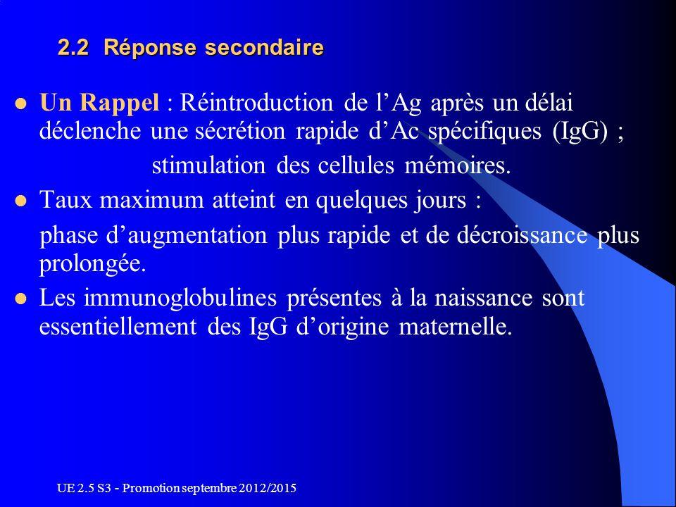 UE 2.5 S3 - Promotion septembre 2012/2015 2.2 Réponse secondaire Un Rappel : Réintroduction de lAg après un délai déclenche une sécrétion rapide dAc s