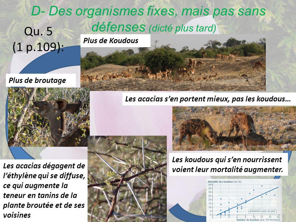 D- Des organismes fixes, mais pas sans défenses (dicté plus tard) Qu. 5 (1 p.109): Plus de Koudous Plus de broutage Les acacias dégagent de léthylène