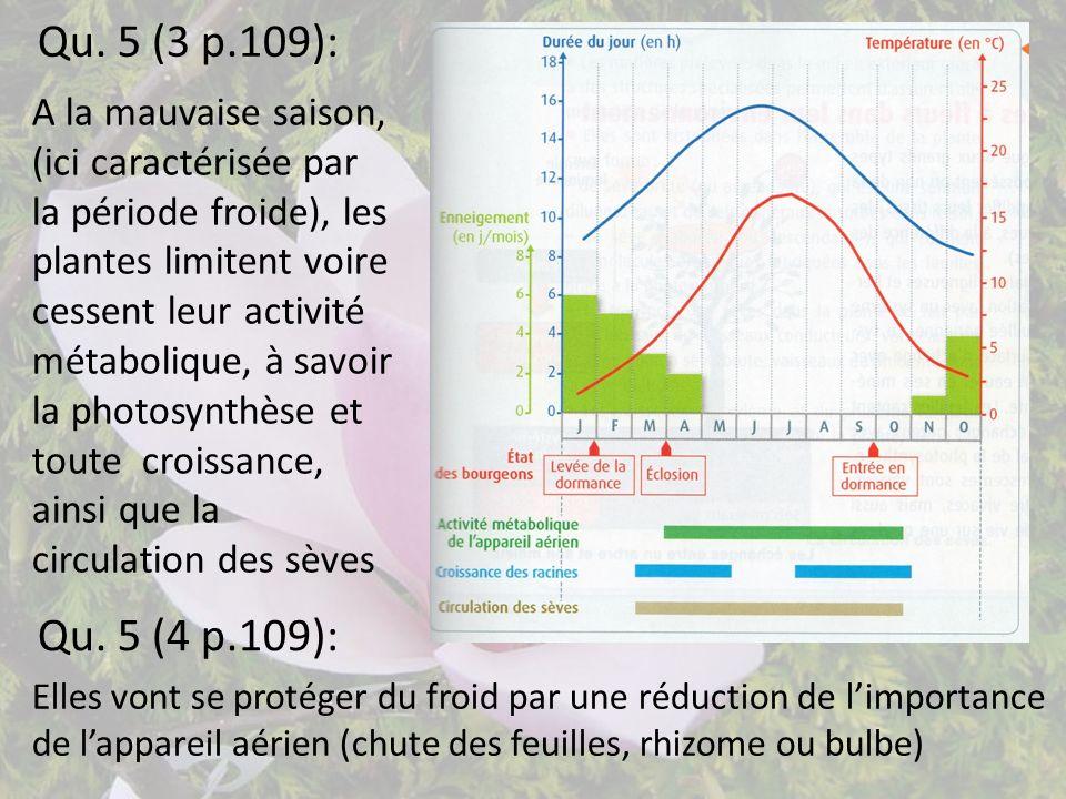 Qu. 5 (3 p.109): A la mauvaise saison, (ici caractérisée par la période froide), les plantes limitent voire cessent leur activité métabolique, à savoi
