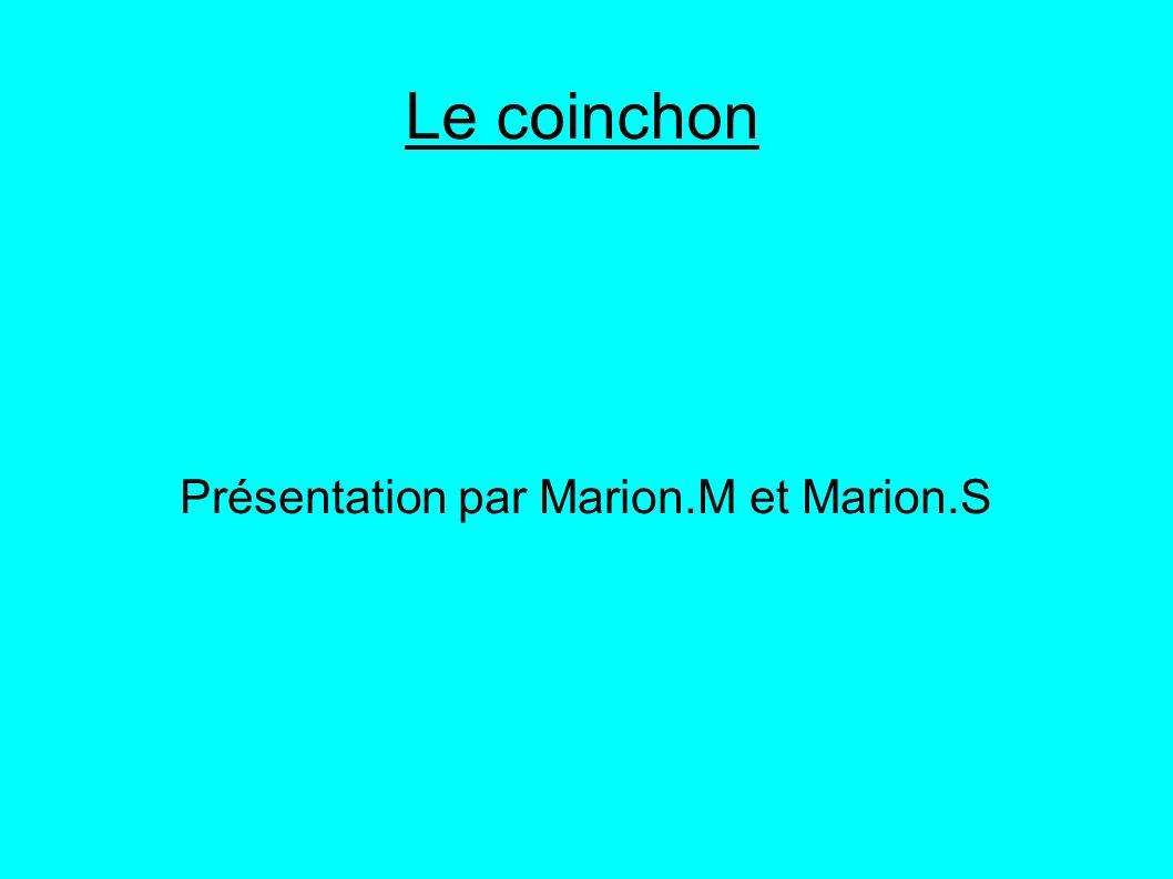 Le coinchon Présentation par Marion.M et Marion.S
