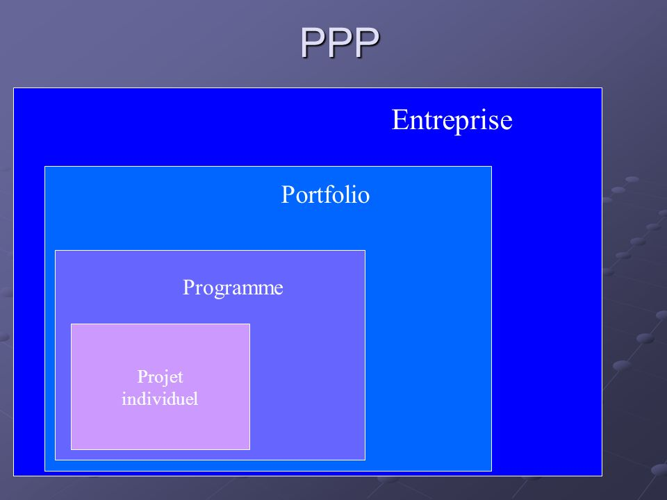 PPP Projet individuel Programme Portfolio Entreprise