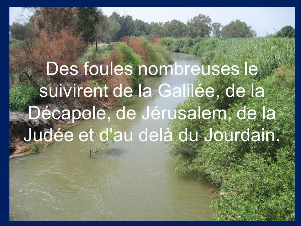 Des foules nombreuses le suivirent de la Galilée, de la Décapole, de Jérusalem, de la Judée et d'au delà du Jourdain.
