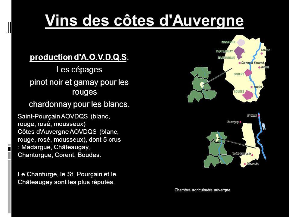 Vins des côtes d Auvergne production d A.O.V.D.Q.S.