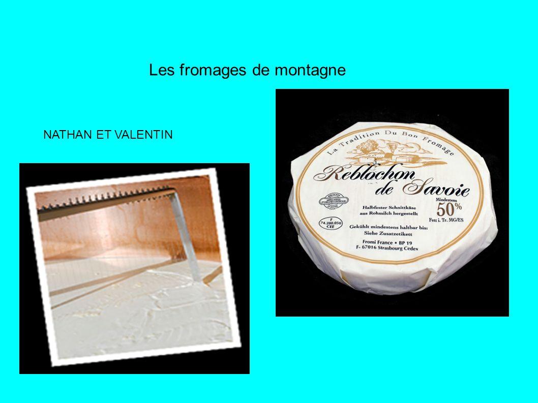 Les fromages de montagne NATHAN ET VALENTIN