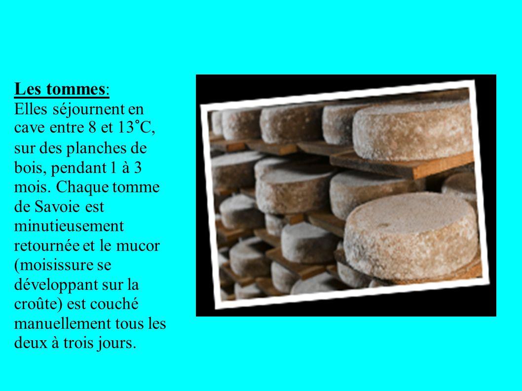 Les tommes : Elles séjournent en cave entre 8 et 13°C, sur des planches de bois, pendant 1 à 3 mois. Chaque tomme de Savoie est minutieusement retourn