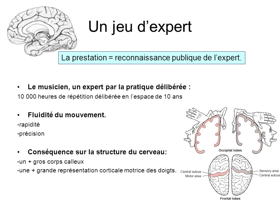 I.Lexpertise musicale comme expertise technique a).