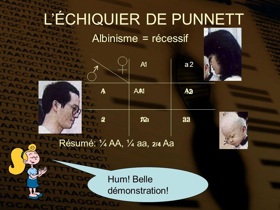 A A a a AA aaAa Albinisme = récessif LÉCHIQUIER DE PUNNETT Résumé: ¼ AA, ¼ aa, 2/4 Aa 12 11 2212 1 2 Hum! Belle démonstration!