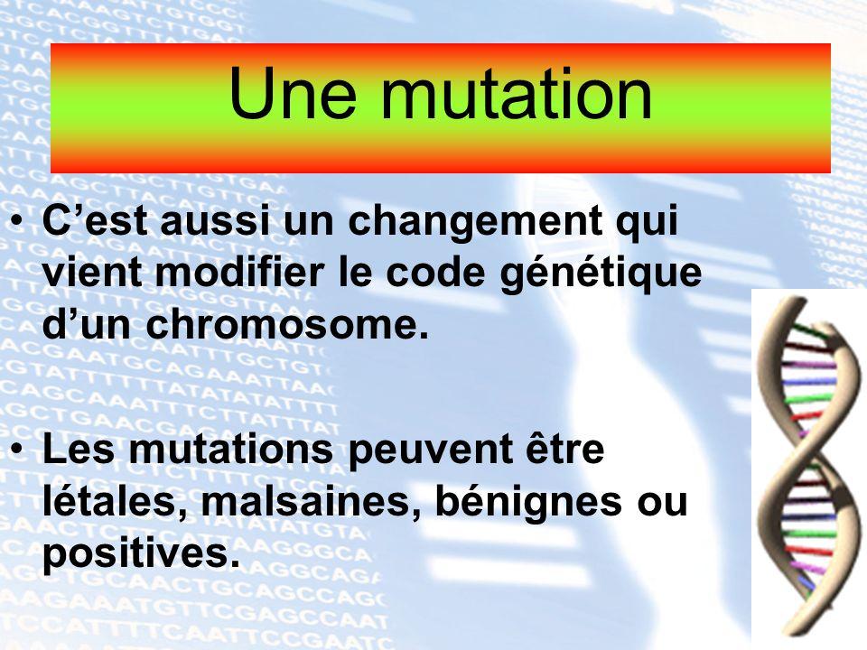 Cest aussi un changement qui vient modifier le code génétique dun chromosome. Les mutations peuvent être létales, malsaines, bénignes ou positives. Un