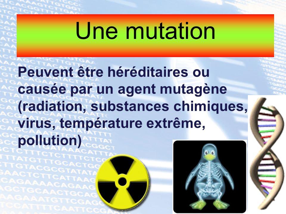 Peuvent être héréditaires ou causée par un agent mutagène (radiation, substances chimiques, virus, température extrême, pollution)