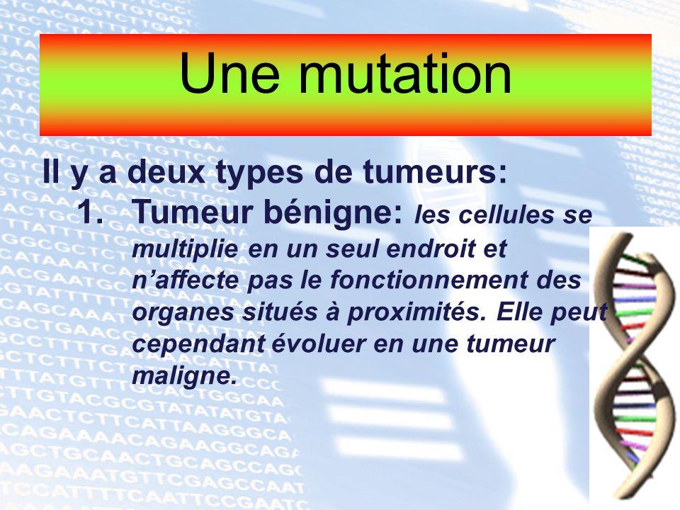 Une mutation Il y a deux types de tumeurs: 1.Tumeur bénigne: les cellules se multiplie en un seul endroit et naffecte pas le fonctionnement des organe