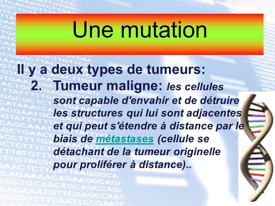 Une mutation Il y a deux types de tumeurs: 2.Tumeur maligne: les cellules sont capable d'envahir et de détruire les structures qui lui sont adjacentes