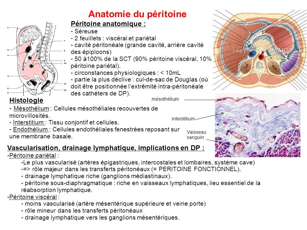 Anatomie du péritoine Péritoine anatomique : - Séreuse - 2 feuillets : viscéral et pariétal - cavité péritonéale (grande cavité, arrière cavité des ép