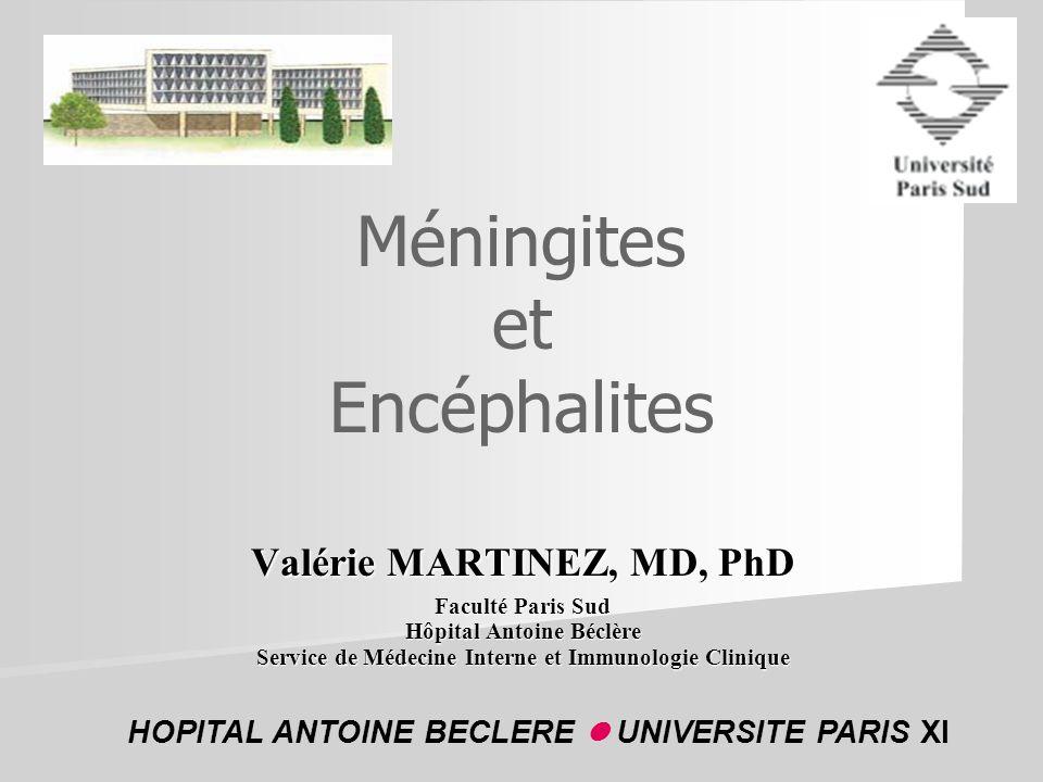 Méningites et Encéphalites Valérie MARTINEZ, MD, PhD Faculté Paris Sud Hôpital Antoine Béclère Service de Médecine Interne et Immunologie Clinique HOP