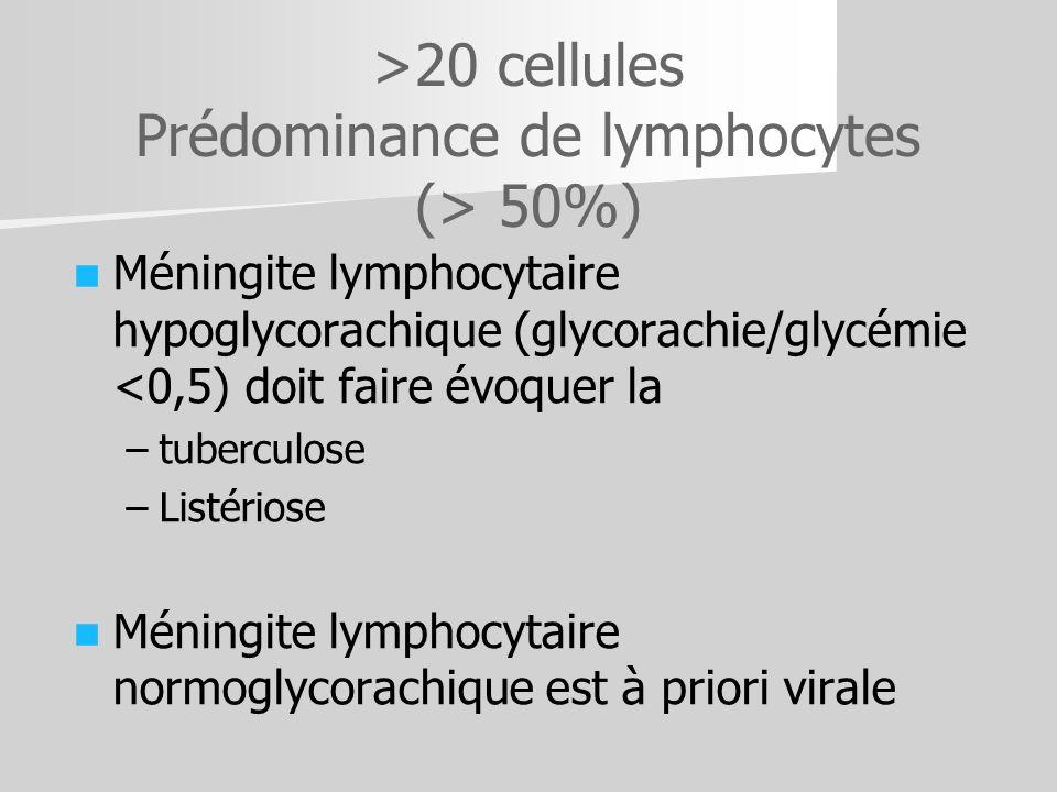 >20 cellules Prédominance de lymphocytes (> 50%) Méningite lymphocytaire hypoglycorachique (glycorachie/glycémie <0,5) doit faire évoquer la – –tuberc