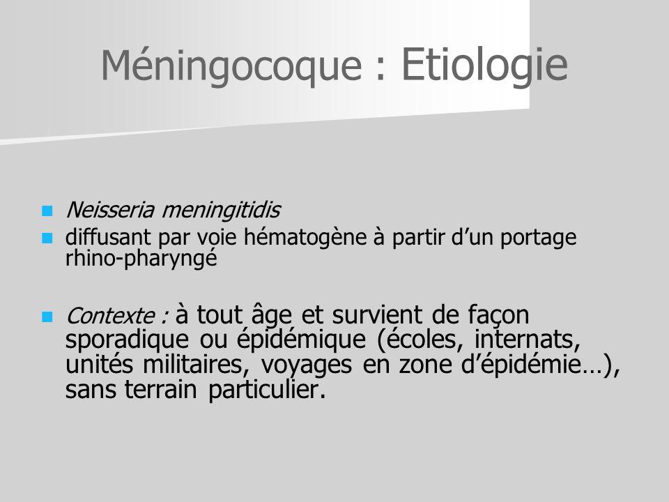 Méningocoque : Etiologie Neisseria meningitidis diffusant par voie hématogène à partir dun portage rhino-pharyngé Contexte : à tout âge et survient de
