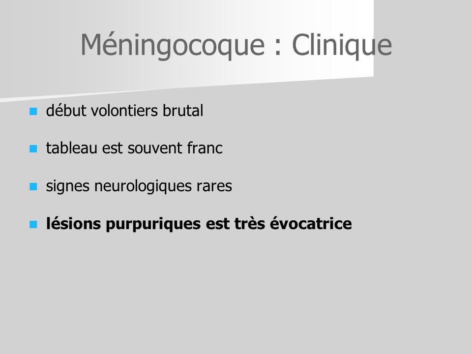 Méningocoque : Clinique début volontiers brutal tableau est souvent franc signes neurologiques rares lésions purpuriques est très évocatrice