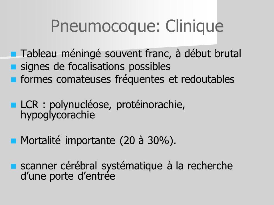 Pneumocoque: Clinique Tableau méningé souvent franc, à début brutal signes de focalisations possibles formes comateuses fréquentes et redoutables LCR