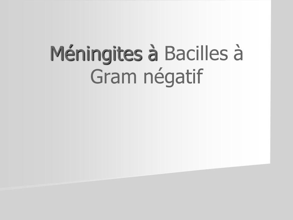 Méningites à Méningites à Bacilles à Gram négatif
