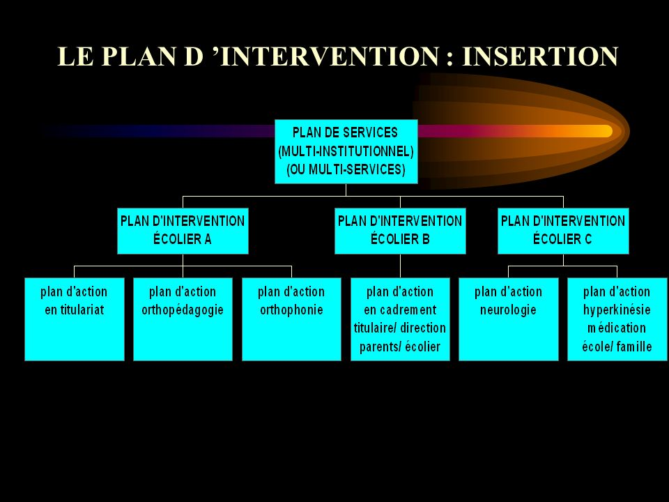 LE PLAN D INTERVENTION : INSERTION