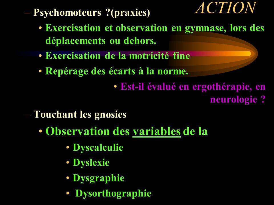 ACTION –Psychomoteurs ?(praxies) Exercisation et observation en gymnase, lors des déplacements ou dehors. Exercisation de la motricité fine Repérage d