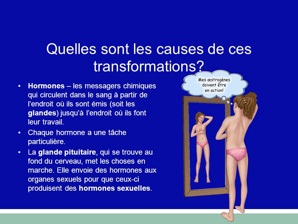 Quelles sont les causes de ces transformations? Hormones – les messagers chimiques qui circulent dans le sang à partir de lendroit où ils sont émis (s