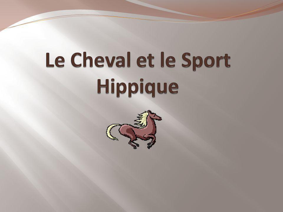 Table des Matières LHistoireLes types de courses hippiquesLes grandes coursesLes hippodromesLes chevaux célèbresLes drivers et jockeys célèbresLes parisLes médiasLe dopage
