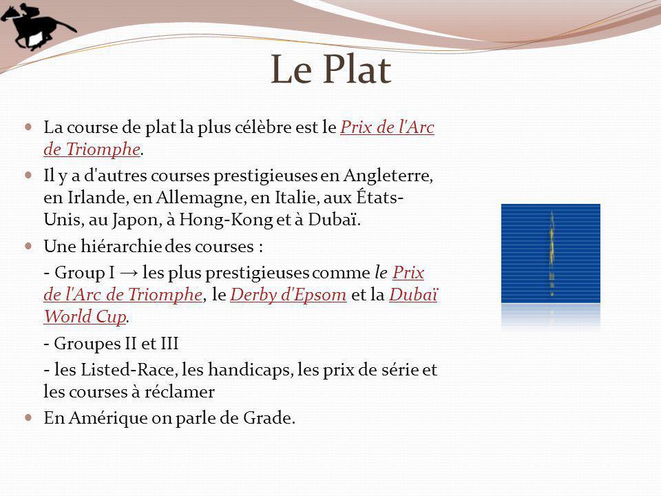 Le Plat La course de plat la plus célèbre est le Prix de l'Arc de Triomphe.Prix de l'Arc de Triomphe Il y a d'autres courses prestigieuses en Angleter