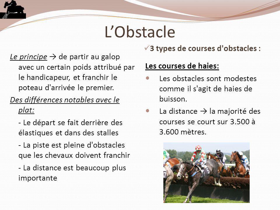 LObstacle 3 types de courses d'obstacles : Le principe de partir au galop avec un certain poids attribué par le handicapeur, et franchir le poteau d'a