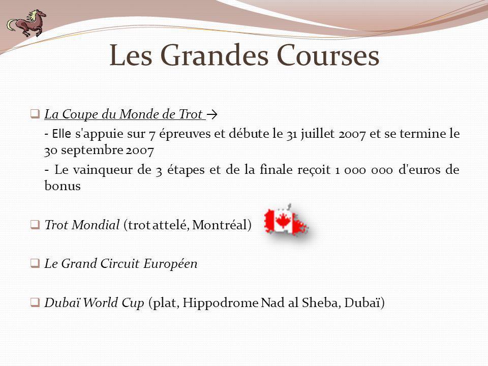 Les Grandes Courses La Coupe du Monde de Trot - Elle s'appuie sur 7 épreuves et débute le 31 juillet 2007 et se termine le 30 septembre 2007 - Le vain