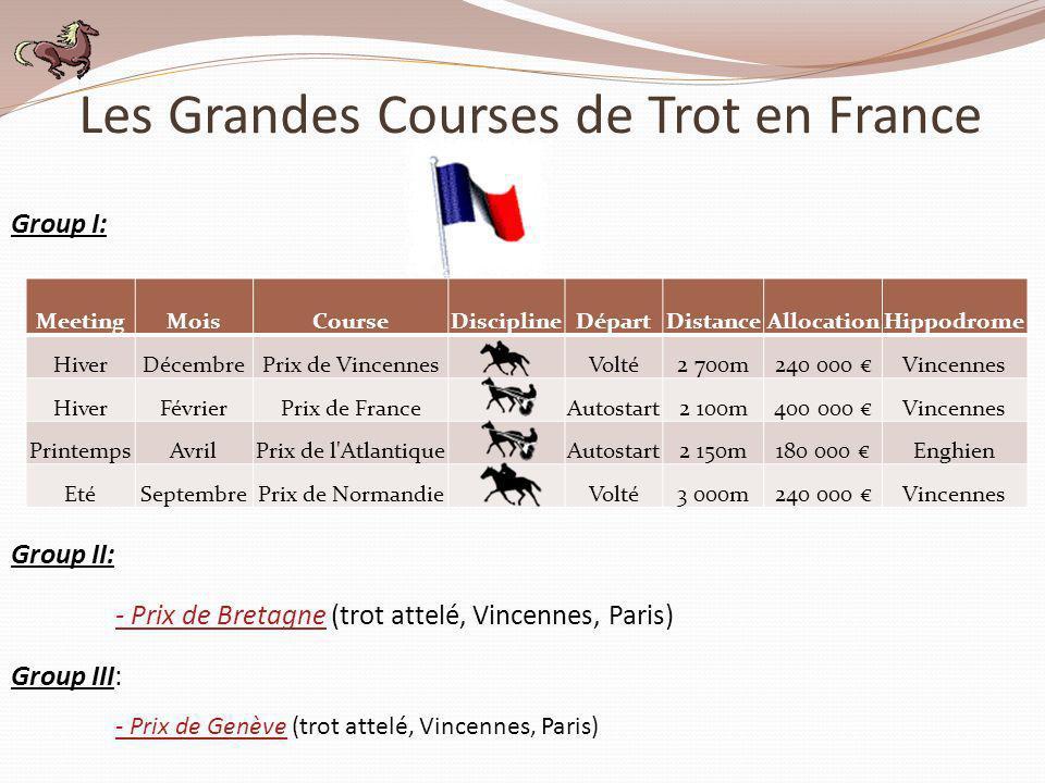 Les Grandes Courses de Trot en France MeetingMoisCourseDisciplineDépartDistanceAllocationHippodrome HiverDécembrePrix de Vincennes Volté2 700m240 000