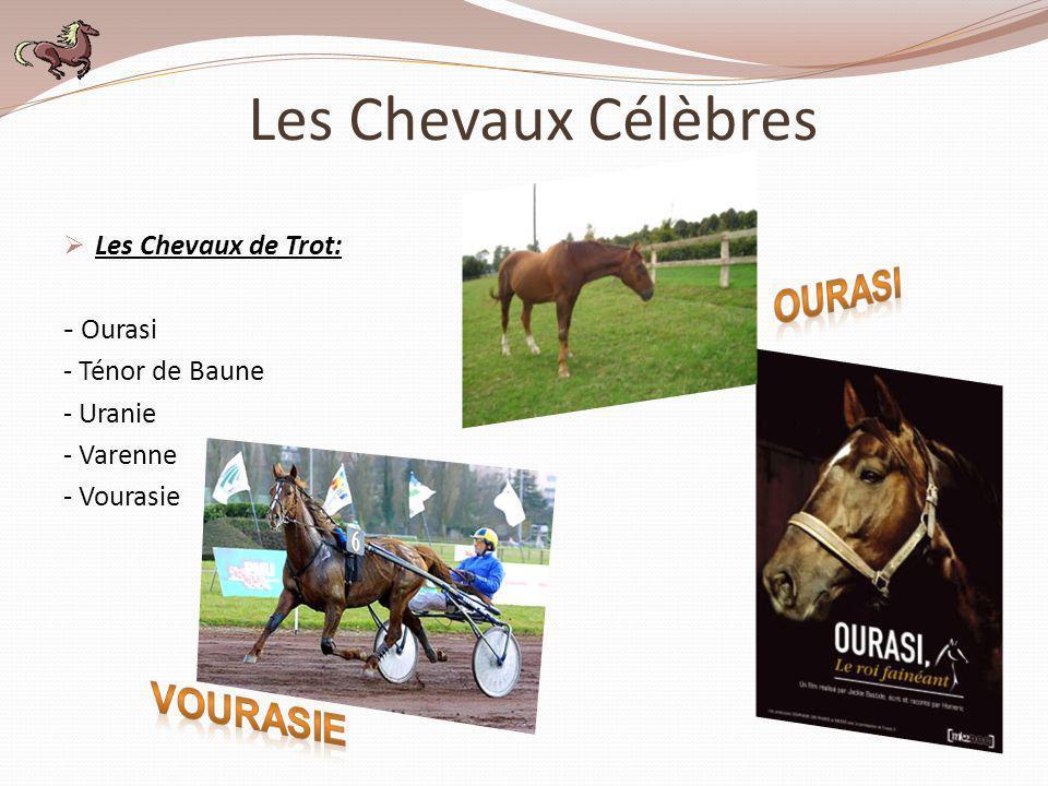 Les Chevaux de Trot: - Ourasi - Ténor de Baune - Uranie - Varenne - Vourasie Les Chevaux Célèbres