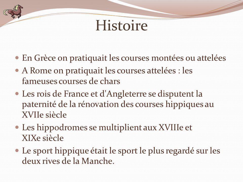 Histoire (suite) En France on pratique les courses de trot depuis 1836.