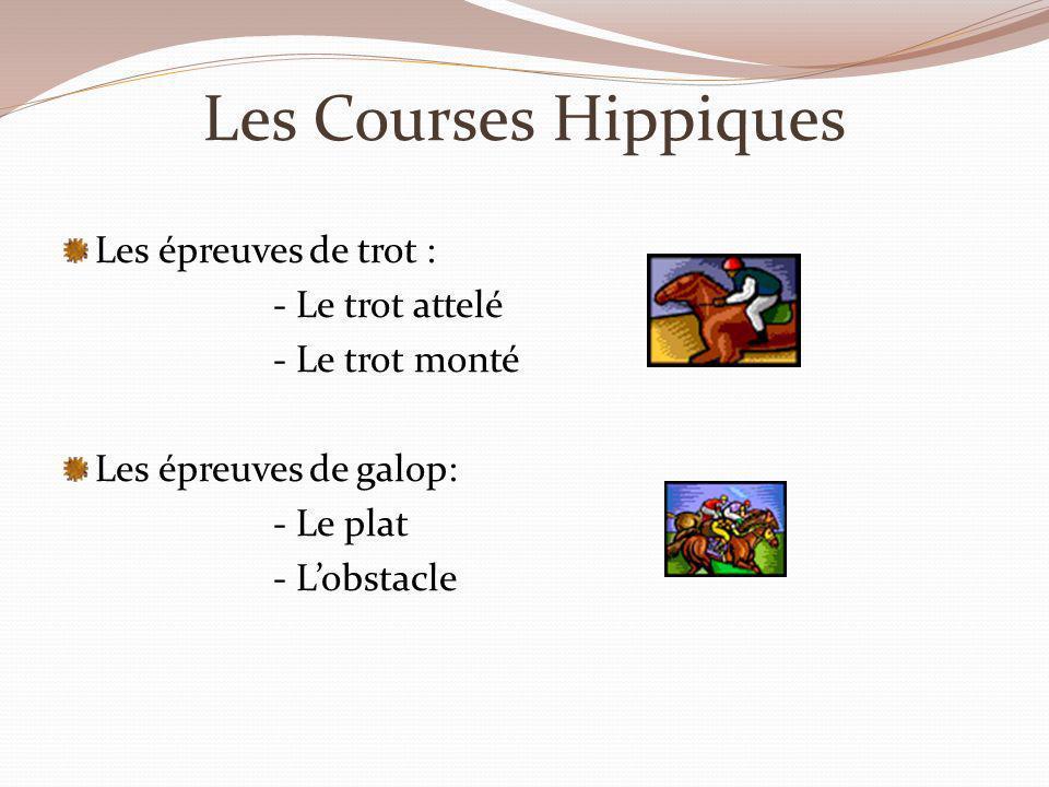 Les Courses Hippiques Les épreuves de trot : - Le trot attelé - Le trot monté Les épreuves de galop: - Le plat - Lobstacle