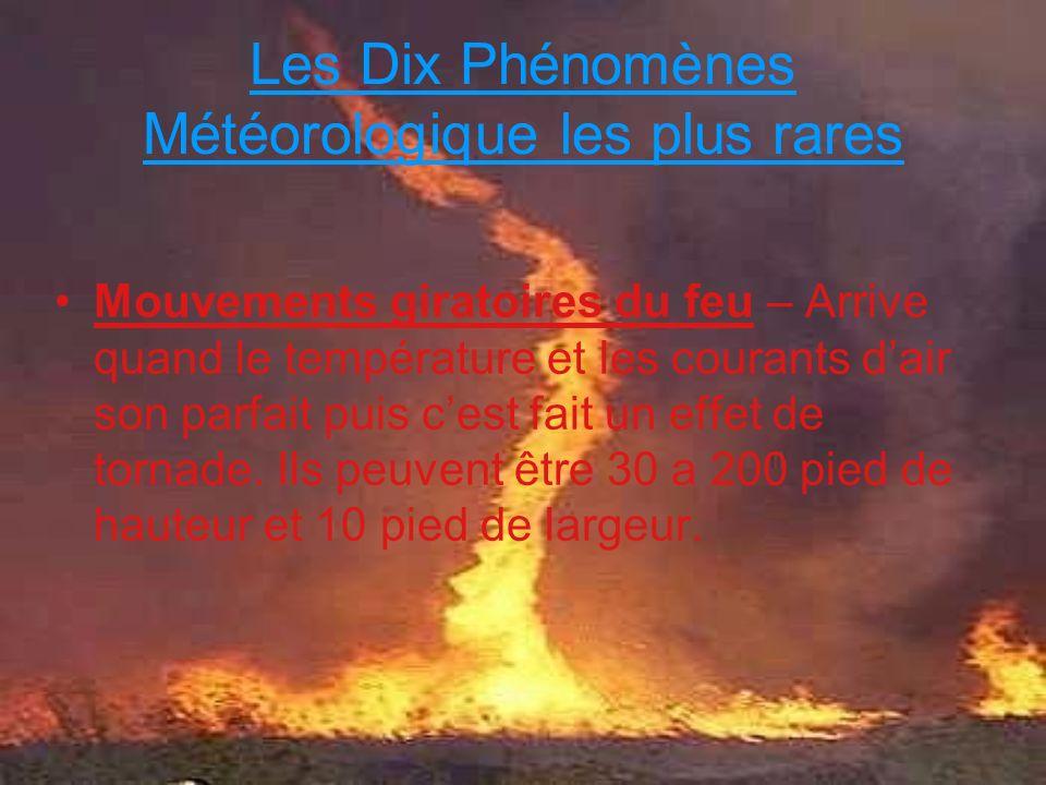 Les Dix Phénomènes Météorologique les plus rares Mouvements giratoires du feu – Arrive quand le température et les courants dair son parfait puis cest