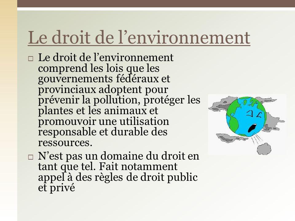 Le droit de lenvironnement comprend les lois que les gouvernements fédéraux et provinciaux adoptent pour prévenir la pollution, protéger les plantes et les animaux et promouvoir une utilisation responsable et durable des ressources.