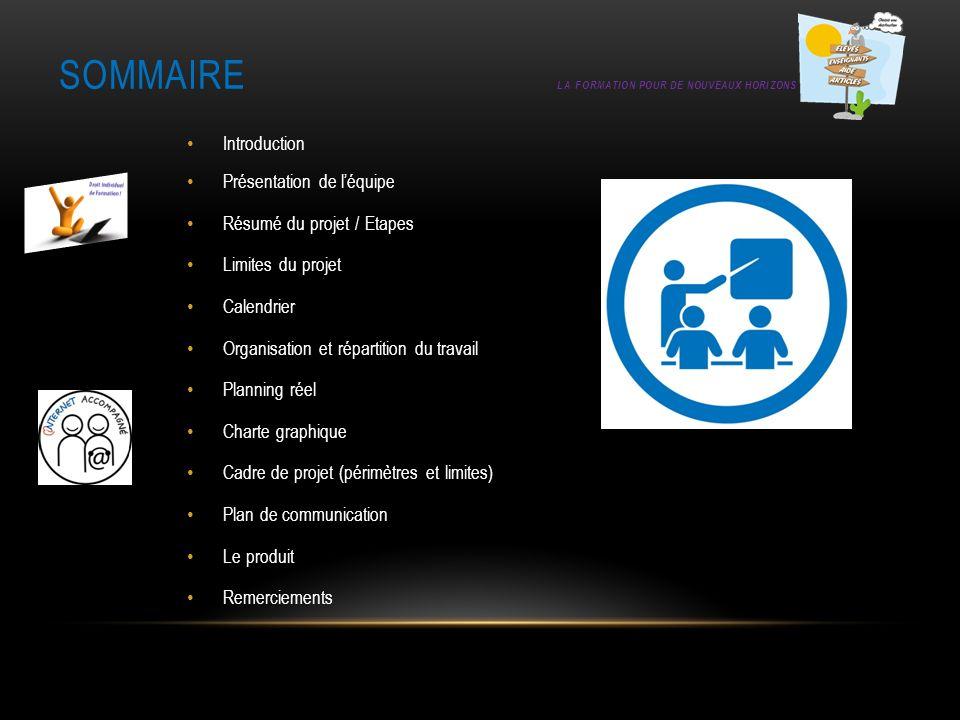 SOMMAIRE LA FORMATION POUR DE NOUVEAUX HORIZONS Introduction Présentation de léquipe Résumé du projet / Etapes Limites du projet Calendrier Organisati