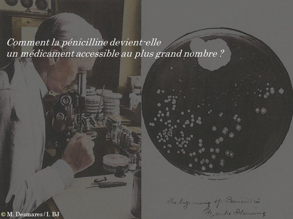 © M. Desmares / I. BJ Comment la pénicilline devient-elle un médicament accessible au plus grand nombre ?