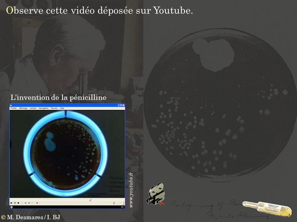 Observe cette vidéo déposée sur Youtube. Linvention de la pénicilline www.youtube.fr © M. Desmares / I. BJ