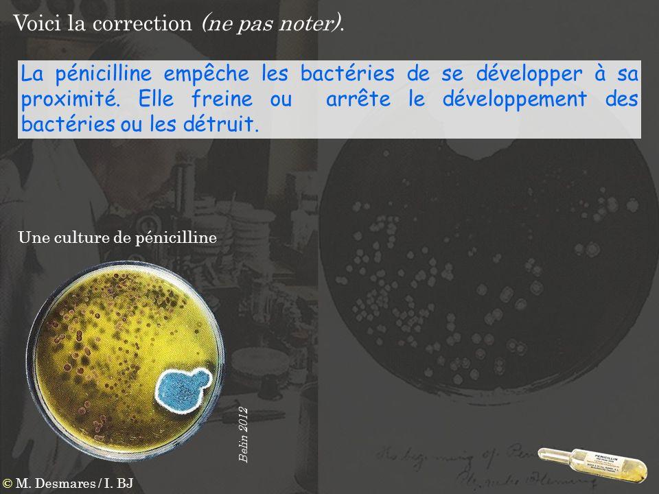 Voici la correction (ne pas noter). La pénicilline empêche les bactéries de se développer à sa proximité. Elle freine ou arrête le développement des b