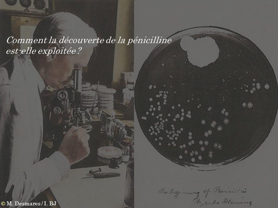 Comment la découverte de la pénicilline est-elle exploitée ?
