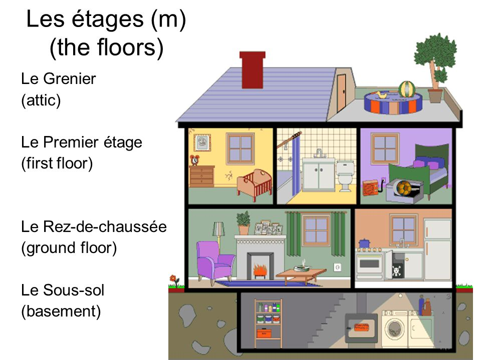 Les étages (m) (the floors) Le Grenier (attic) Le Premier étage (first floor) Le Rez-de-chaussée (ground floor) Le Sous-sol (basement)