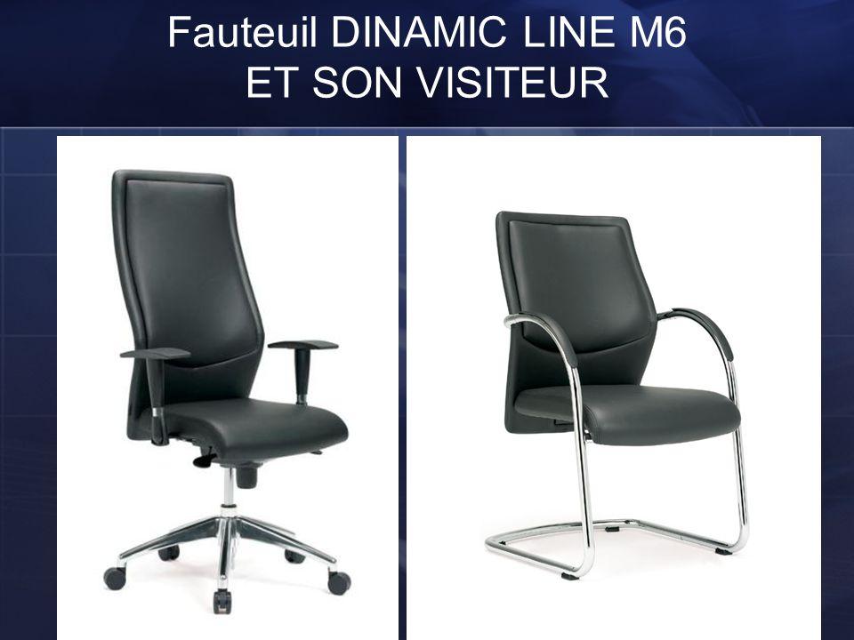 Fauteuil DINAMIC LINE M6 ET SON VISITEUR