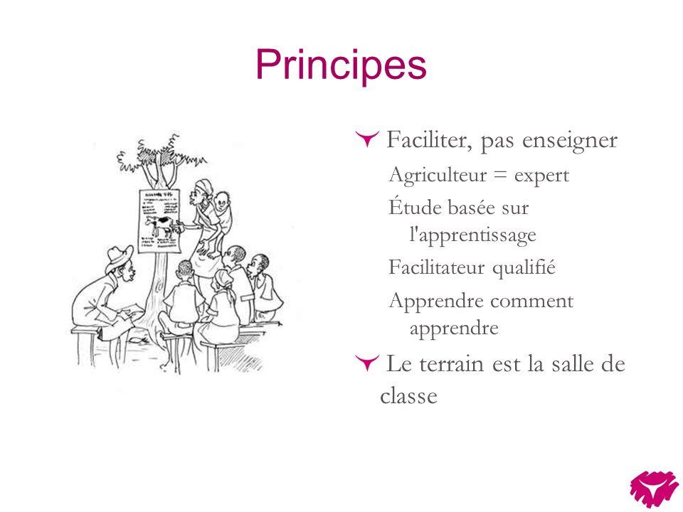 Principes Faciliter, pas enseigner Agriculteur = expert Étude basée sur l apprentissage Facilitateur qualifié Apprendre comment apprendre Le terrain est la salle de classe