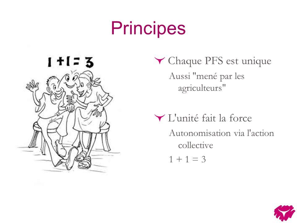 Principes Chaque PFS est unique Aussi mené par les agriculteurs L unité fait la force Autonomisation via l action collective 1 + 1 = 3