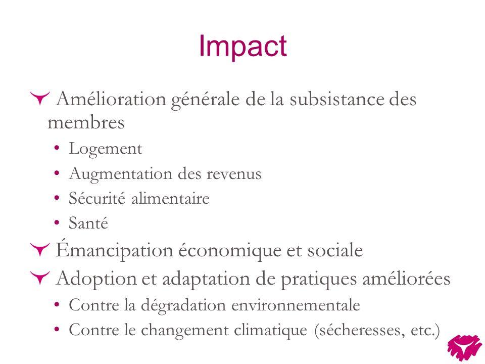 Impact Amélioration générale de la subsistance des membres Logement Augmentation des revenus Sécurité alimentaire Santé Émancipation économique et sociale Adoption et adaptation de pratiques améliorées Contre la dégradation environnementale Contre le changement climatique (sécheresses, etc.)