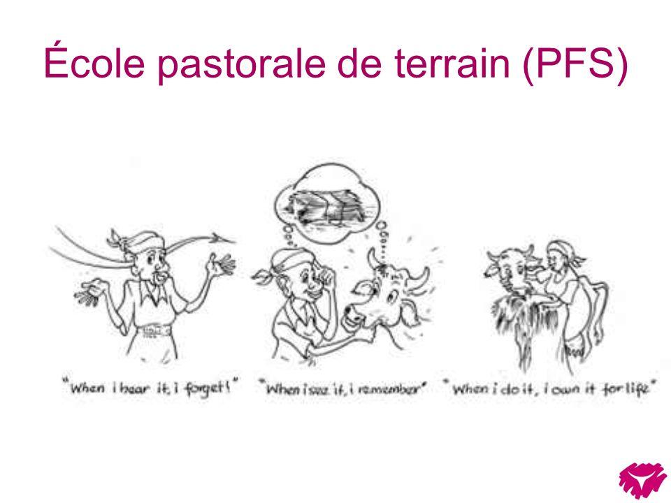 École pastorale de terrain (PFS)