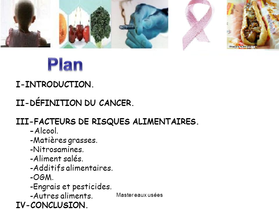 I-INTRODUCTION. II-DÉFINITION DU CANCER. III-FACTEURS DE RISQUES ALIMENTAIRES. -Alcool. -Matières grasses. -Nitrosamines. -Aliment salés. -Additifs al